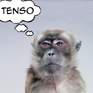 [Imagem: macaco_tenso.jpg]